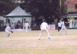 cricket match in action