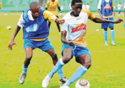 stars turn focus on gambia