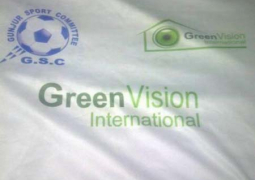 green vision international